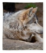 Mexican Wolf Fleece Blanket