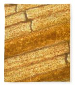 Micrograph Of A Goldfish Tail Fleece Blanket