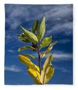 Milkweed Pods Against A Blue Sky Background Fleece Blanket