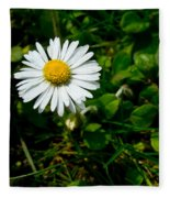 Miniature Daisy In The Grass Fleece Blanket