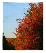 Minnesota Morning Fleece Blanket