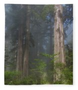 Mists Rising From Lady Bird Johnson Grove Fleece Blanket