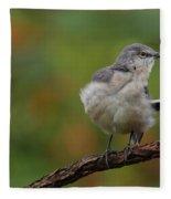 Mocking Bird Perched In The Wind Fleece Blanket