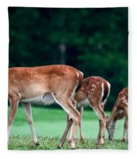 Mom With Twins Fleece Blanket