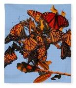 Monarch Migration Fleece Blanket