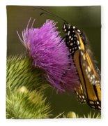 Monarch On Thistle 2 Fleece Blanket