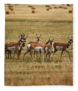 Montana Antalope 9396 Fleece Blanket