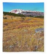 Montana100 0885  Fleece Blanket