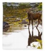 Moose Baby 2 Fleece Blanket