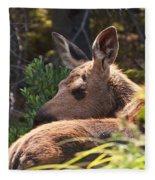 Moose Baby 5 Fleece Blanket