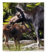 Moose Brunch Fleece Blanket