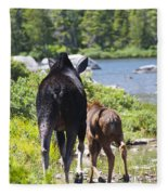 Moose Ends Baxter State Park Maine Fleece Blanket