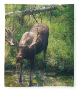 Moose Is Loose Fleece Blanket
