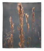 Morning Sunshine On Tall Reeds Fleece Blanket