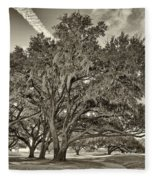 Moss-draped Live Oaks Sepia Toned Fleece Blanket