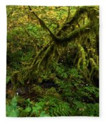 Moss In The Rainforest Fleece Blanket