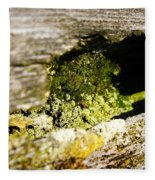 Mossy Fence Fleece Blanket