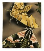 Moths Fleece Blanket