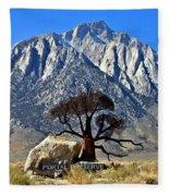 Mount Williamson Fleece Blanket