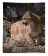 Mountain Lion On The Prowl Fleece Blanket