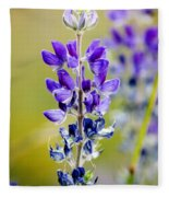 Mountain Lupine Glacier National Park Fleece Blanket