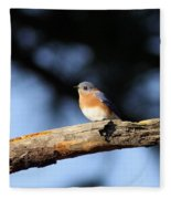 Mr. Bluebird Fleece Blanket