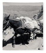 Mule Train Bw Fleece Blanket