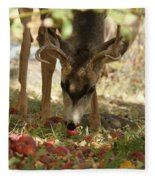 Mulie Buck 4 Fleece Blanket