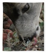 Mulie Buck 5 Fleece Blanket