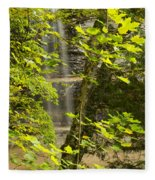 Munising Falls 4 Fleece Blanket