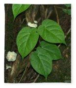 Mushroom Between The Leaves Fleece Blanket