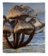 Mushroom Cluster Fleece Blanket