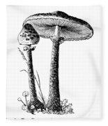 Mushroom: Parasol Agaric Fleece Blanket