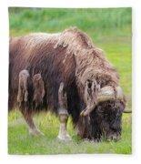 Musk Ox Fleece Blanket