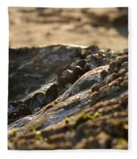 Mussels Sunset Fleece Blanket