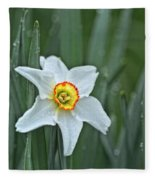 Narcissus In The Rain Fleece Blanket