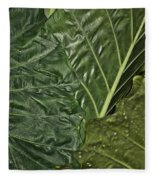 Natural Abstract 39 Fleece Blanket