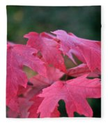Naturally Vibrant Fleece Blanket