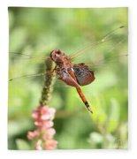 Nature Square - Saddleback Dragonfly Fleece Blanket