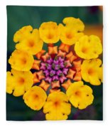 Nature's Designs Fleece Blanket