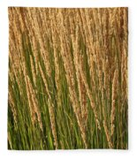 Nature's Own Gold Fleece Blanket