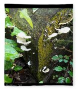 Natures Right Angle Degrees Fleece Blanket