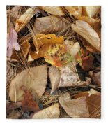 Nature's Still Life 1 Fleece Blanket