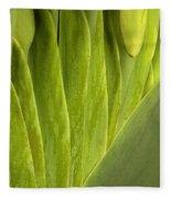 Nature's Still Life 2 Fleece Blanket