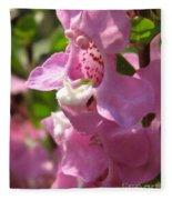 Nemesia Named Poetry Lavender Pink Fleece Blanket