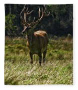 New Zealand Elk Fleece Blanket