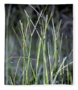Night Walk Through The High Grass Fleece Blanket