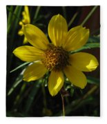 Nodding Bur Marigold Fleece Blanket