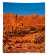 North And South Windows Fleece Blanket