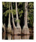 North Carolina - Lake Fleece Blanket
